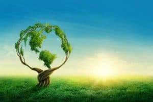 Energie renouvelable avec Calisea France