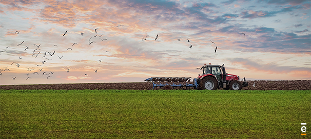 Le secteur agricole un rôle pour la transition énergétique